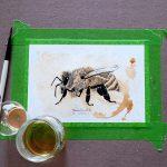 Honey Bee *